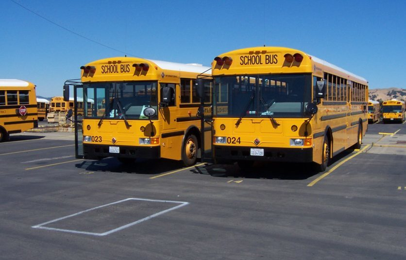 This is an image of two yellow school buses parked in a parking lot